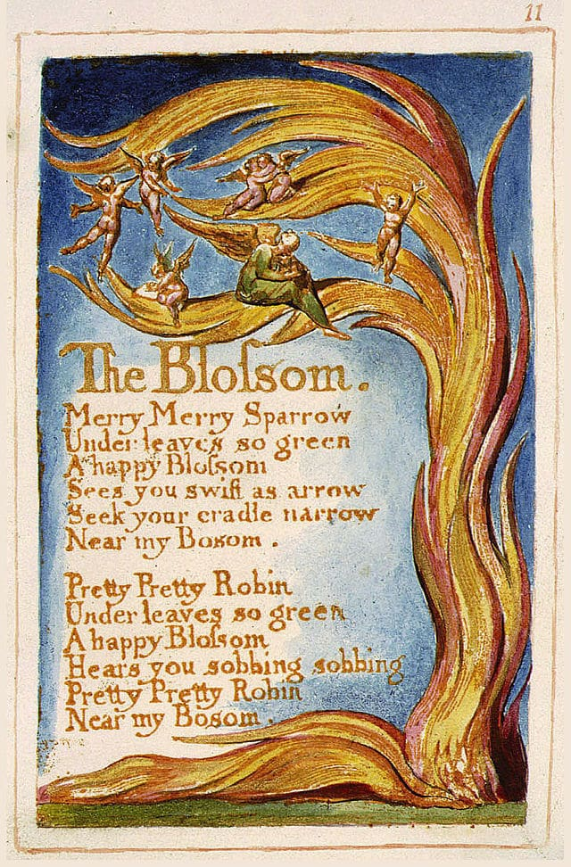 """<span class=""""entry-title-primary"""">The Blossom</span> <span class=""""entry-subtitle"""">by William Blake</span>"""